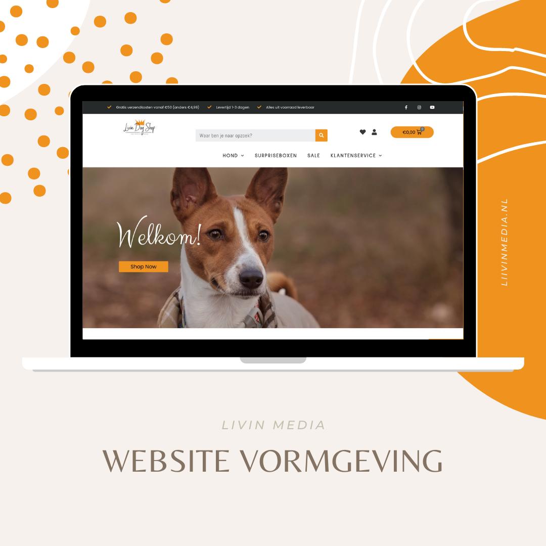 Website vormgeving